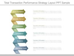 Total Transaction Performance Strategy Layout Ppt Sample