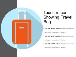 Tourism Icon Showing Travel Bag