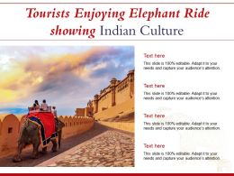 Tourists Enjoying Elephant Ride Showing Indian Culture