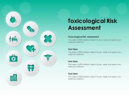 Toxicological Risk Assessment Ppt Powerpoint Presentation Infographics Portfolio