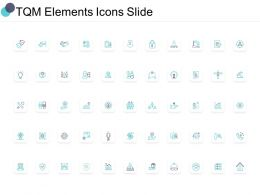 TQM Elements Icons Slide Pillar C1191 Ppt Powerpoint Presentation Pictures Background