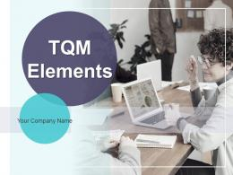 TQM Elements Powerpoint Presentation Slides