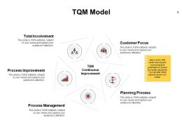TQM Model Improvement Ppt Powerpoint Presentation Professional Layouts