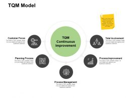 TQM Model Process Improvement Ppt Powerpoint Presentation Gallery