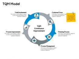 Tqm Model Process Improvement Ppt Powerpoint Presentation Show Pictures