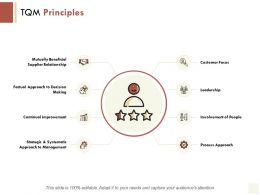 TQM Principles Continual Improvement Management Ppt Powerpoint Presentation Icon Demonstration