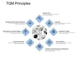 TQM Principles Involvement Leadership Ppt Powerpoint Presentation Slides Professional