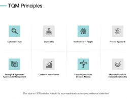 TQM Principles Leadership Improvement Ppt Powerpoint Presentation File Portrait