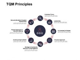 TQM Principles Strategic And Systematic Ppt Powerpoint Presentation Ideas Visual Aids