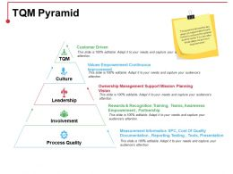 Tqm Pyramid Ppt Icon Background Designs