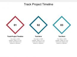 Track Project Timeline Ppt Powerpoint Presentation Pictures Styles Cpb