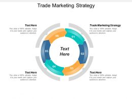 Trade Marketing Strategy Ppt Powerpoint Presentation Files Cpb