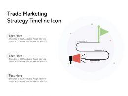 Trade Marketing Strategy Timeline Icon