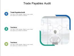Trade Payables Audit Ppt Powerpoint Presentation Model Slide Portrait Cpb