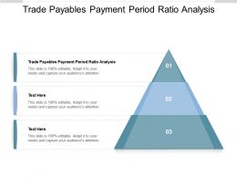 Trade Payables Payment Period Ratio Analysis Ppt Powerpoint Presentation Ideas Cpb