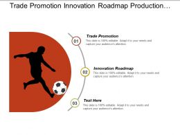 Trade Promotion Innovation Roadmap Production Management Enterprise Structure