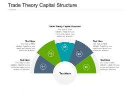 Trade Theory Capital Structure Ppt Powerpoint Presentation Show Microsoft Cpb