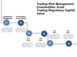 Trading Risk Management Commodities Scale Trading Regulatory Capital Value Cpb