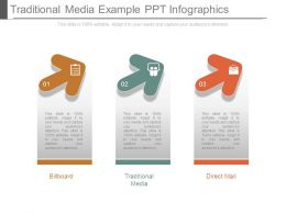Traditional Media Example Ppt Infographics