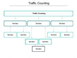 Traffic Counting Ppt Powerpoint Presentation Styles Designs Download Cpb