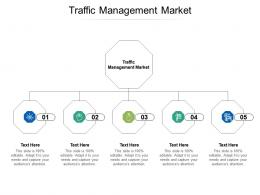 Traffic Management Market Ppt Powerpoint Presentation Summary File Formats Cpb
