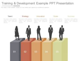 Training And Development Example Ppt Presentation