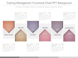Training Management Functional Chart Ppt Background