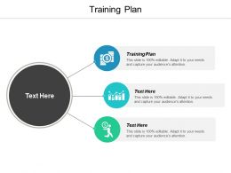 Training Plan Ppt Powerpoint Presentation Ideas Examples Cpb