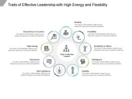 Traits Of Effective Leadership With High Energy And Flexibility
