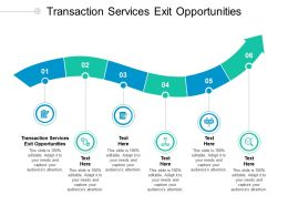Transaction Services Exit Opportunities Ppt Powerpoint Presentation Outline Cpb
