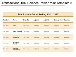 Transactions Trial Balance Powerpoint Template 5