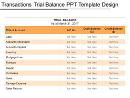 Transactions Trial Balance Ppt Template Design