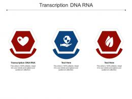 Transcription DNA RNA Ppt Powerpoint Presentation Design Templates Cpb