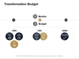 Transformation Budget Ppt Powerpoint Presentation File Infographics