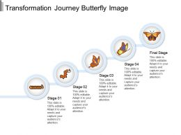 Transformation Journey Butterfly Image