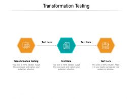 Transformation Testing Ppt Powerpoint Presentation Portfolio Example Topics Cpb