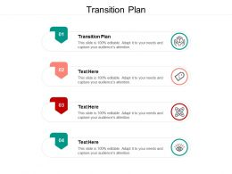 Transition Plan Ppt Powerpoint Presentation Ideas Grid Cpb