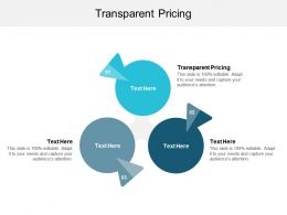 Transparent Pricing Ppt Powerpoint Presentation Infographic Template Gridlines Cpb
