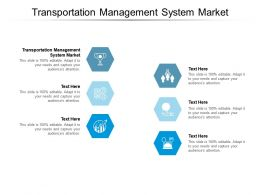 Transportation Management System Market Ppt Presentation Professional Outfit Cpb