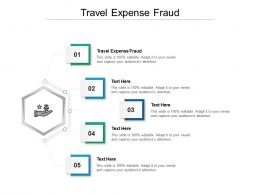 Travel Expense Fraud Ppt Powerpoint Presentation Icon Display Cpb