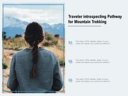 Traveler Introspecting Pathway For Mountain Trekking