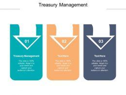 Treasury Management Ppt Powerpoint Presentation Model Demonstration Cpb