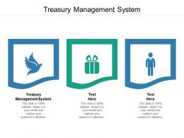 Treasury Management System Ppt Powerpoint Presentation Good Cpb