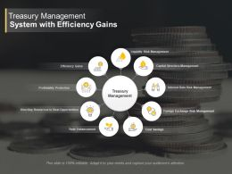 Treasury Management System With Efficiency Gains