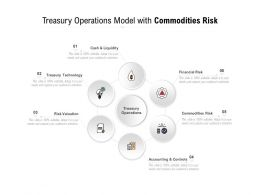 Treasury Operations Model With Commodities Risk