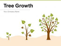 Tree Growth Organization Financial Performance Strategies Business Process