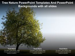 Tree Nature Powerpoint Templates And Powerpoint Backgrounds With All Slides