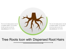 Tree Roots Icon With Dispersed Root Hairs