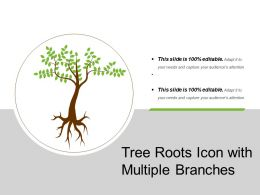 Tree Roots Icon With Multiple Branches
