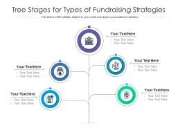 Tree Stages For Types Of Fundraising Strategies Infographic Template